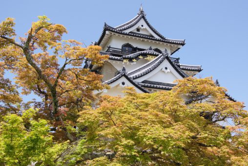 彦根城天守 – Hikone castle tower