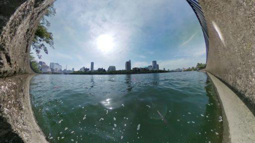 大川の水際 – Waterfront