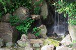小滝 – Waterfall
