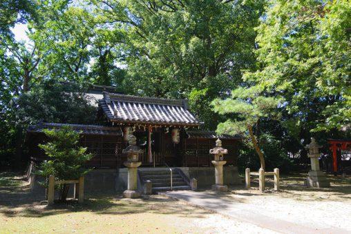 膳所神社拝殿 – Zeze shrine
