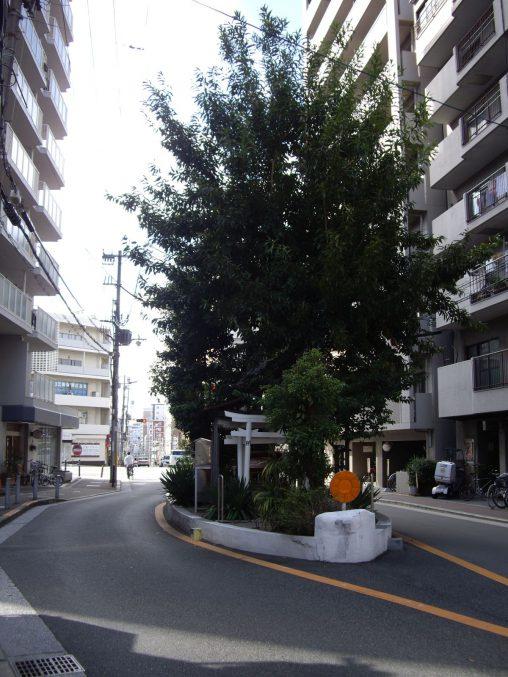 楠木大神 – Kusunoki Shrine