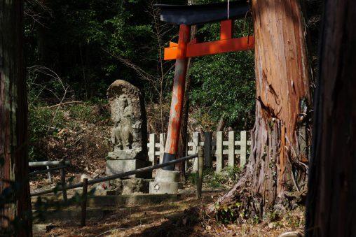 仏像と鳥居 – Buddharupa and Torii