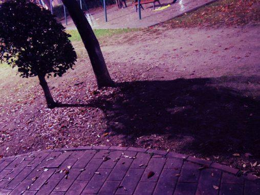 夜の公園、クロスプロセス / Cross Processing