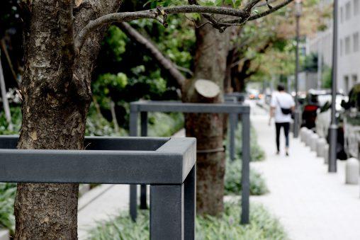 街路樹の歩道 – Sidewalk