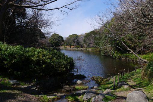明石城桜堀 – Sakura Canal