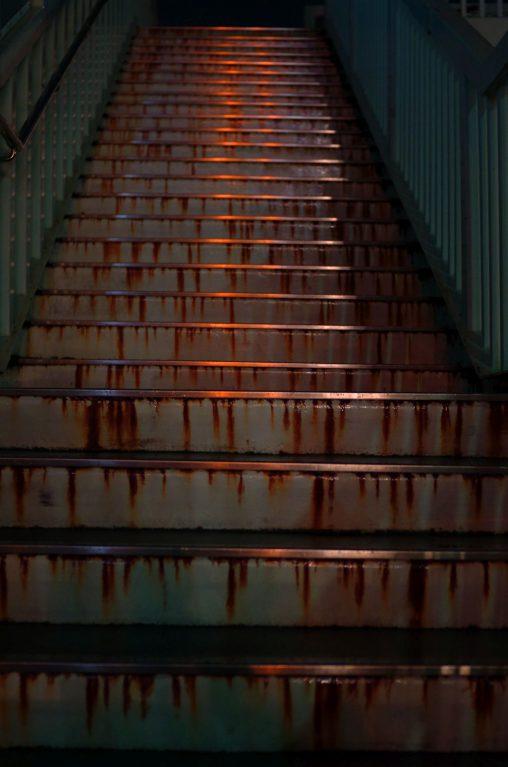 レッドカーペット – Red carpet