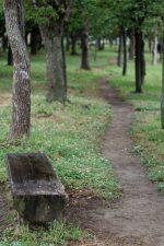 ベンチと小道 – Bench and Pass