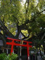 靭楠永神社 – Utsubo Kusunaga shrine