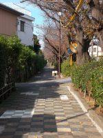 いちかわ文学の散歩道 – Ichikawa literary promenade