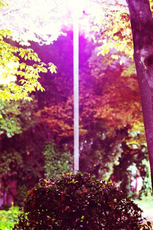 虹色 – Iridescent