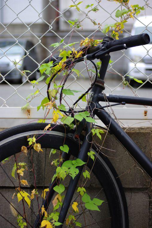 捨て自転車 – Ruined Bicycle