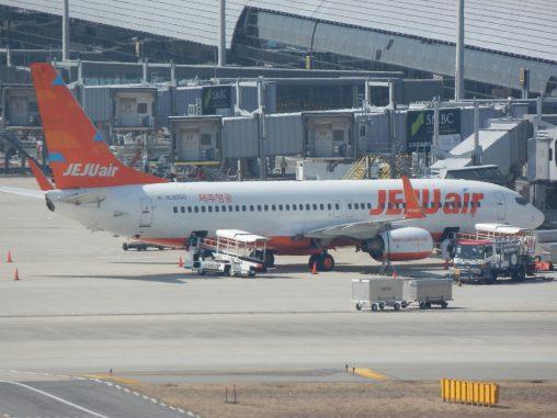チェジュ航空 ボーイング737-800 – Jeju Air Boeing 737-800