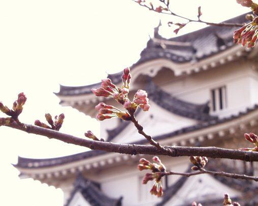 宇和島城 – Uwajima castle