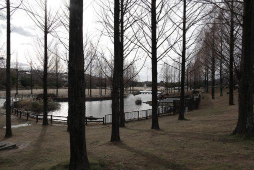 打上川治水緑地 – Flood control park