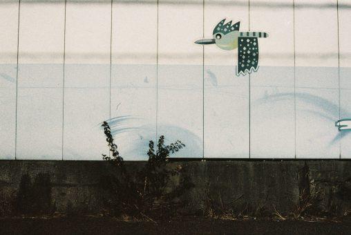 雑草の落書き – Graffiti by weeds