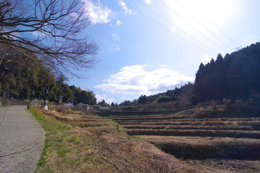 東豊浦町の棚田 – Terraced Rice-fields