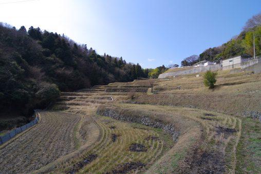 西畑町の棚田 – Terraced rice-fields