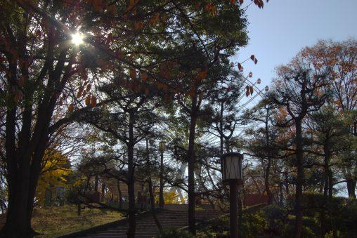 天保山公園と観覧車 – Tenpozan Park