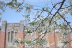砲兵工廠の春 – Arsenal in Spring