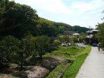 山辺の道(3枚) – Ancient road of Yamanobe (3 pics)