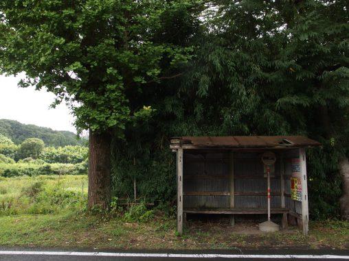 小湊鉄道バス・神社前バス停 – Ruined Bus Stop